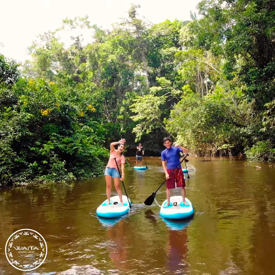 waita-paddleboard01